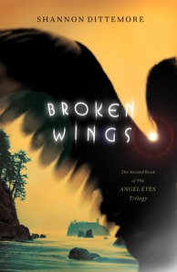 Broken Wings cover
