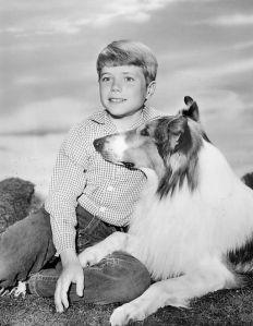 Jon_Provost_Lassie_1962