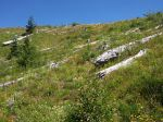 Mt_st_helens_Johnston_ridge_25_years_later