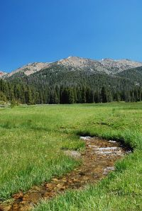 Mountain_Stream_Sun_Valley