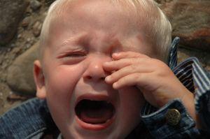 cryingbaby-452511-m