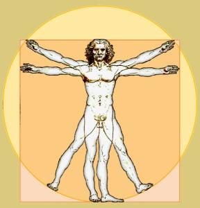 Vitruvian-Icon-b